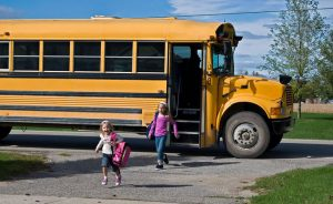 Exploring School Bus Safety Standards & Seat Belt Laws for the United States